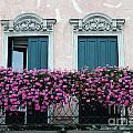 Padua Balcony And Window Boxes by Mike Nellums