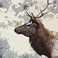 Painted Bull Elk by Steve McKinzie