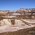 Painted Desert Landscape by Adam Jewell
