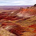 Painted Desert by Mike McGlothlen