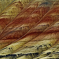 Painted Hills Lines by Wes and Dotty Weber