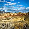 Painted Hills by Steve McKinzie