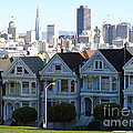 Painted Ladies by Linda Woods