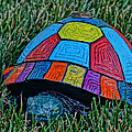 Painted Turtle Sprinkler by Mick Anderson