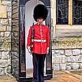 Palace Guard by Jim Pruett