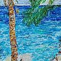 Palm 06 by Bradley Bishko