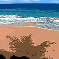 Palm Shadow On The Beach by Ian  MacDonald