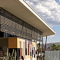 Palm Springs Animal Shelter  by William Dey