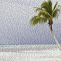 Palm Tree On The Tropical Beach by Maurizio Bersanelli