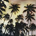 Palm Tree Sky by Michelle Iglesias