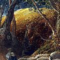 Palmer: Apple Tree by Granger