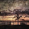 Palms And Docks by Skip Nall