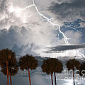 Palms And Lightning 3 by Stephen Whalen