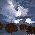 Palms And Lightning 4 by Stephen Whalen
