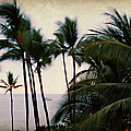 Palms In The Breeze by Paulette B Wright