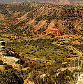 Palo Duro Canyon Texas by Robert Frederick