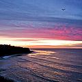 Palos Verdes Sunset by Endre Balogh