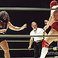 Pampero Firpo Vs Texas Red In Old School Wrestling From The Cow Palace  by Jim Fitzpatrick
