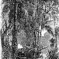 Panama Railway, 1875 by Granger
