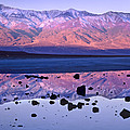 Panamint Range Reflected In Standing by Tim Fitzharris