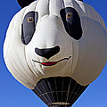 Panda Bear Hot Air Balloon by Garry Gay