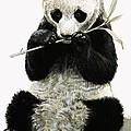 Panda by R B Davis