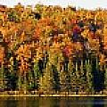 Panorama Of Trees Along The Waters Edge by David Chapman