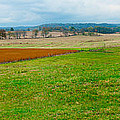 Panorama Valley Farm by Randall Branham