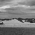 Panoramic Of Lossiemouth Beach On West Coast Of Scotland by Zoe Ferrie