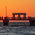 Panoramic Pier by David Lee Thompson