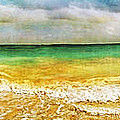 Panoramic Seaside At Tulum by Tammy Wetzel