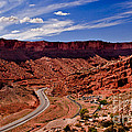 Panoramic View                                                       by Robert Bales