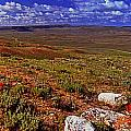 Panoramic View Of Fossil Butte Nm Valley by Rich Walter