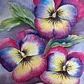 Pansies by Dee Carpenter
