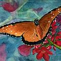 Papilio Fandango  by Lynne Reichhart
