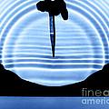 Parabolic Reflection by Berenice Abbott