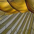 Parachute Shade by David Salter