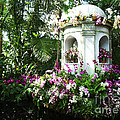 Paradise Gazebo by Mike Nellums