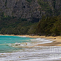 Paradise With A Ocean View by Mitch Shindelbower
