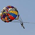 Paraglider Blue by Kantilal Patel