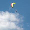 Paraglider by Cindy Singleton