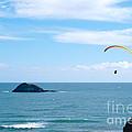 Paraglider On The Ocean Beach by Yurix Sardinelly