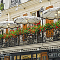 Paris Cafe by Elena Elisseeva