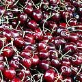 Paris Cherries by Rdr Creative