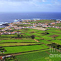 Parish In The Azores by Gaspar Avila