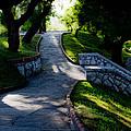 Park - Parque by Felix Mazo