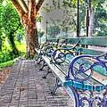 Park Bench On Riverside Drive by Jeremy Lankford