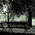 Park Benches In Autumn by Joana Kruse