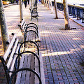 Park Benches In Hoboken by George Oze