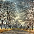 Park Road by Jeremy Lankford